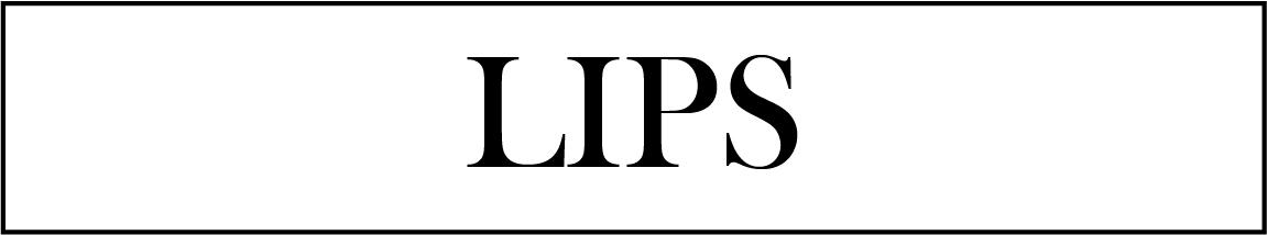vegan lip makeup brush
